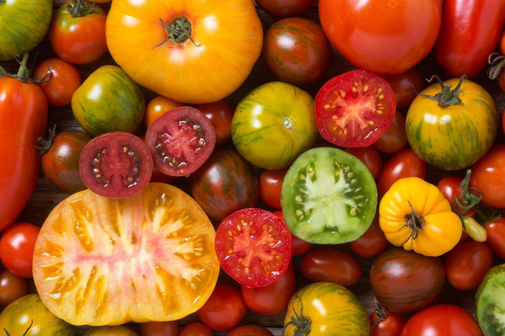 pomodori gialli pomodori neri pomodori rossi